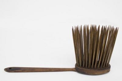 Brush to Detoxify the Body